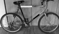 rowery-dluga-26-06-2016